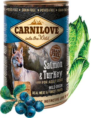 Salmon & Turkey for adult dogs